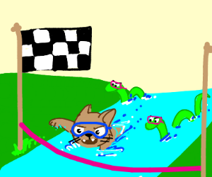 Cat and snakes have a river swim contest
