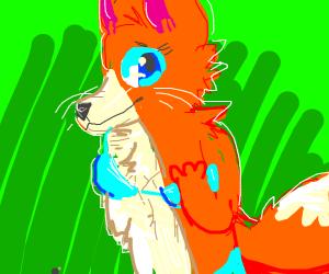 Slightly Lewd fox