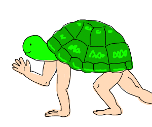 Tortoise with human arms and legs