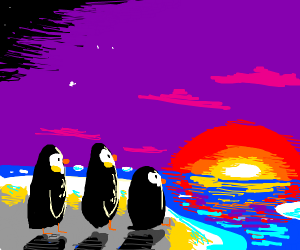 Penguins watch the sunrise