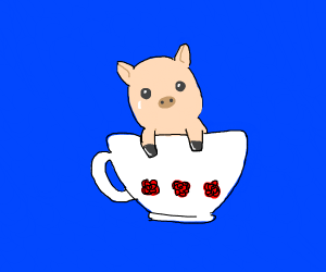 A pig in a tea cup