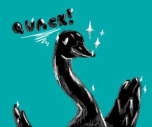 Shiny Black Duck