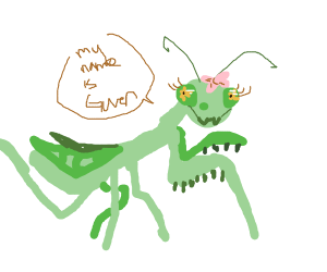 The bug's name is Gwen