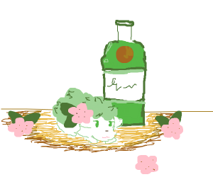 Shaymin Gin