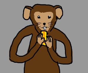 Mouse monkey