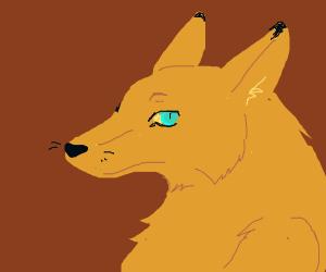 Fox furry