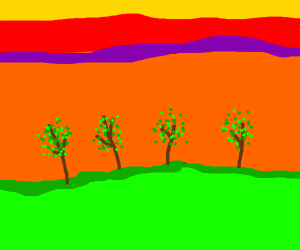Trees in a sunset