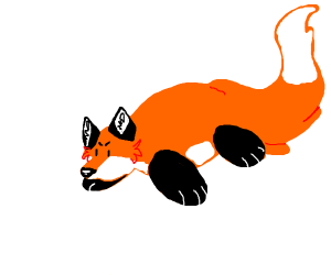 angry fox is a chonker