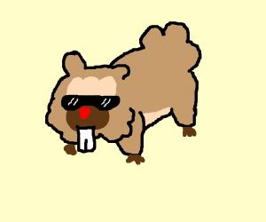 a bidoof with glasses