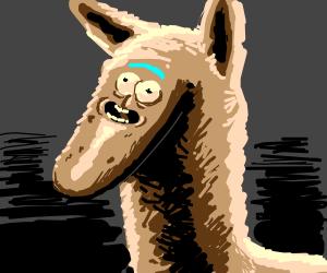 Llama/Pickle Rick