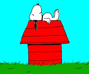 Snoopy on dog house