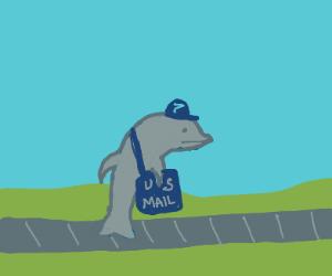 Dolphin mailman