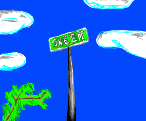 street sign saying sneet