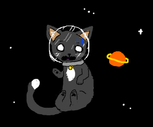 Cat floats in space with a air helmet
