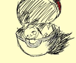 inside a pokeball