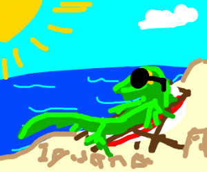 yonic iguana sits at the beach