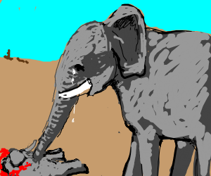 elephant crying after killing their baby