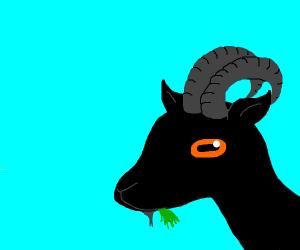 Black creature orange eyes, pointy ears