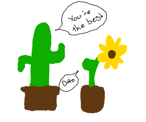 Cactus and sunflowervare best friends