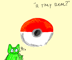 are pokeballs real? (good artists only)