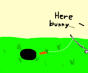 fishing with carrots