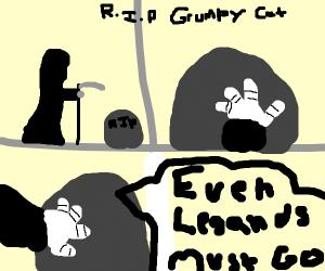 RIP grumpy cat :(