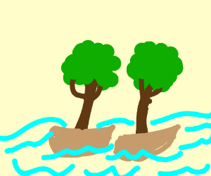 two trees on boats on a river