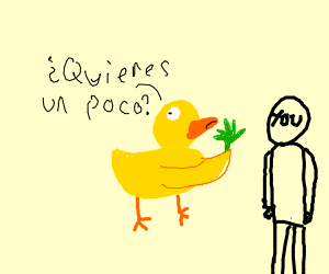 duck offers you weed en espanol
