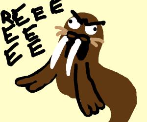 Walrus raging