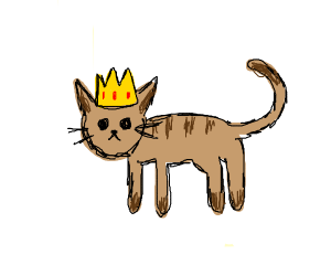 Cat wearing a crown (CATS RULE)