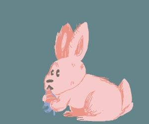 Rabbit eating a carrot