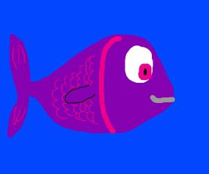 purple pretty fish