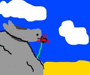 Seal smelling a rose