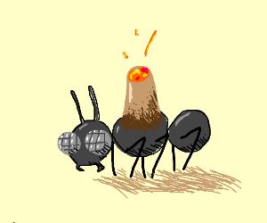Ant volcano