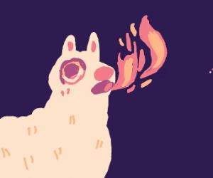 Llama spits fire