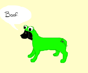 A black dog with a closed green onesie