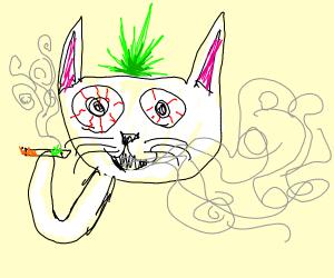 Happy White Cat smoking Cannabis