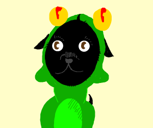 A small black dog in a frog onesie