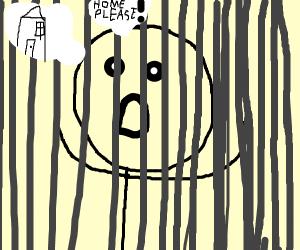 Prisoner wants to go home