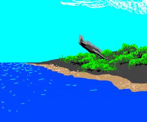 traditional plane crash on island