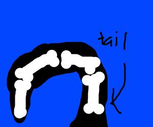 Tail bone