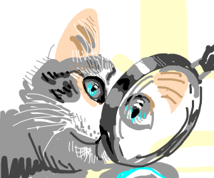 Blue cat in front of magnifying glass