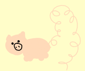 Pig with long curly tail