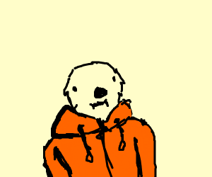 Otter in an orange hoodie