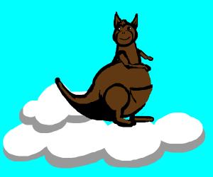 Kangaroo playing in the Clouds