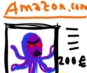 Octopus on Amazon