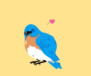 Blue Birb