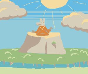 monk donkey sat on top of mountain
