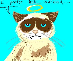 grumpy cat in heaven
