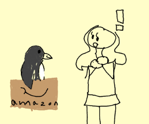 PENGUIN SHIPPED IN AMAZON BOX TO A LADY